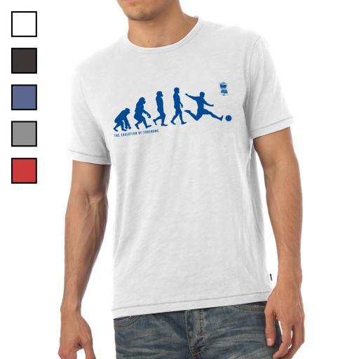 Personalised Birmingham City Evolution Mens T-Shirt.