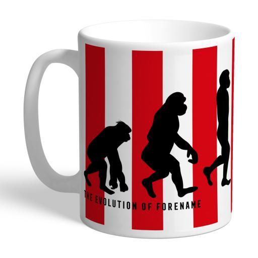Sunderland AFC Evolution Mug
